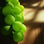2012_06_12_grozdje